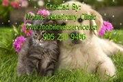 Mobile Vet Service - Home Visiting Vet  Emergency Vet Toronto