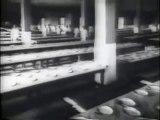 Immigration Through Ellis Island - Award Winning Documentary Video Film[240P]