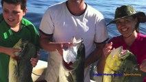 San Diego Fishing Charters, 2013 Fishing Season