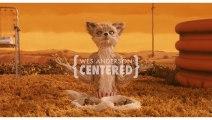 Wes Anderson y sus planos centrados