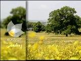 Dramay Rawchi Koylekan Alqay 12 درامای ڕاوچی کۆیلهکان ئهڵقهی