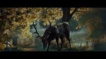 Hannibal: Homage Video - The Ravenstag