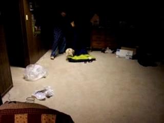 Pug Chasing Sleeping Bag