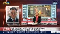 """François de Rugy, co-auteur de la """"Loi Florange"""", dans Le Grand Journal - 27/03 1/4"""