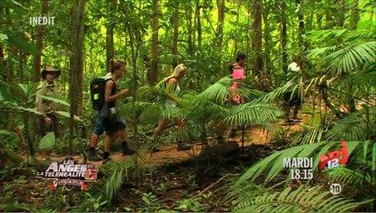 Les Anges de la télé-réalité 6 découvrent la jungle australienne