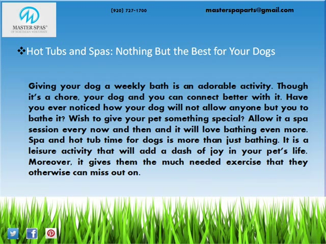 Spas as a Great Retreat for Your Dogs