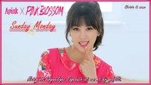 Apink 4TH MINI [Pink Blossom] Mr Chu English Lyrics - SUBTITLE plus