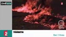 Zap télé: Du chat dans des kebabs... réchauffement climatique