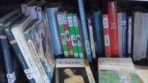 La 6ème bibliothèque libre de Savoie Récup aux HALLES de Chambéry