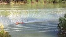 hydro artisanal brushless 6s
