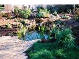 Paysagiste, aménagement extérieur : créer un jardin aquatique, aménager un bassin, jardin de paysagiste