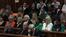 Oscar Pistorius takes to the stand during murder trial