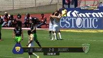 Pumas 2 - 1 Jaguares.....Pumas recuperó terreno y piensa en Liguilla