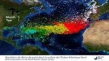 Simulation de la répartition des déchets plastiques dans l'Atlantique nord