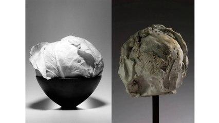Mapplethorpe Rodin : La bande-annonce