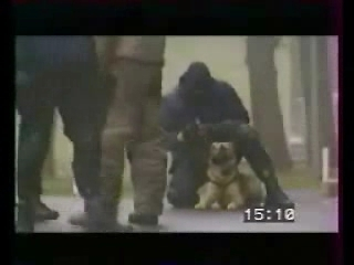 France Police Dog Training