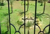 Heliopolis apartments for rent   furnished apartment overlooking larg garden