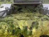 Lake and Pond Algae Harvesting and removal