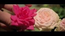 Roses à crédit - Bande annonce