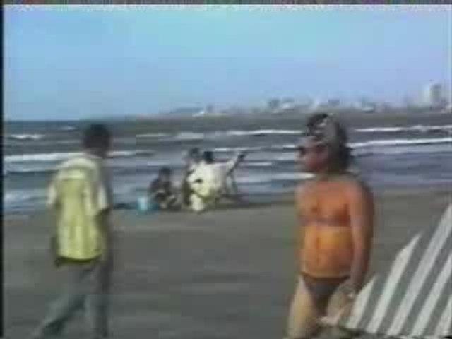 Vidéo Gags Best Of 2005