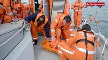 Quiberon (56). Exercice d'évacuation d'un blessé en mer