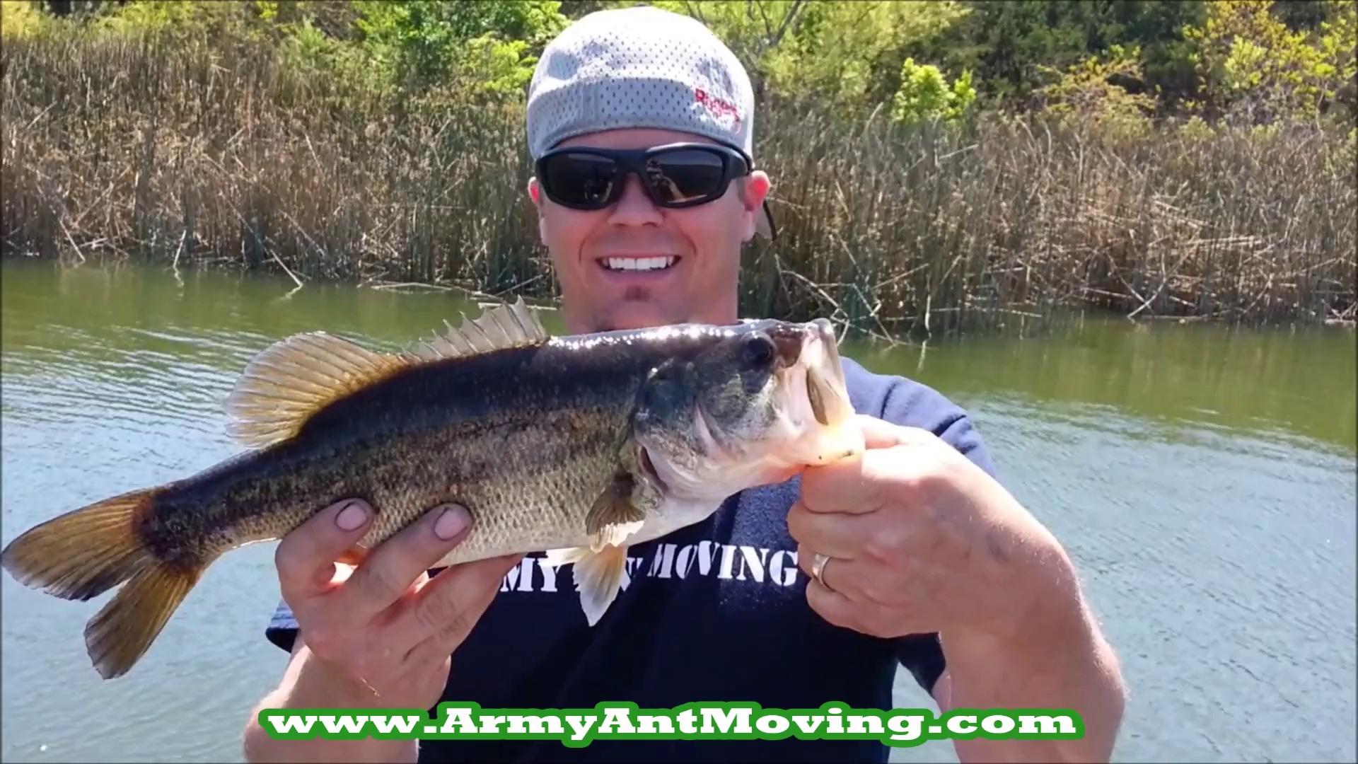 Bass Fishing Decker Lake Austin Texas