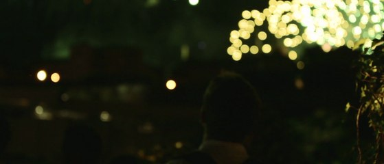 Les Nuits de Fourvière 2014