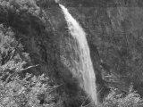 Cascade puissante chute d'eau en pleine nature - Vidéo