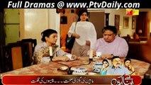 Shab-e-Zindagi Episode 12  on Hum Tv 15th April 2014