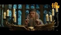 Dumbledore hoca (dublaj)