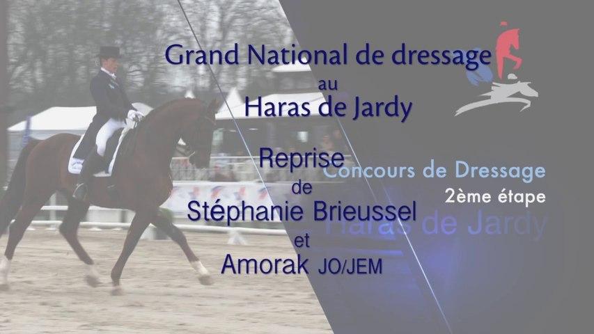 Grand National de Dressage Haras de Jardy. Reprise de Stéphanie Brieussel et Amorak JO/JEM