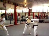 tae kwon do green belt test