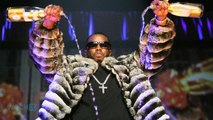 How Much Is Sean Combs, The Richest Man In Hip Hop Worth?