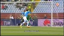 هدفي مباراة اودينيزي 1-1 نابولي - تعليق حاتم بطيشة - 19/4/2014