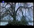 2000/04 Keren Ann - Peut Etre (sur l'île de Peilz) (TSR L'Échappée Belle)