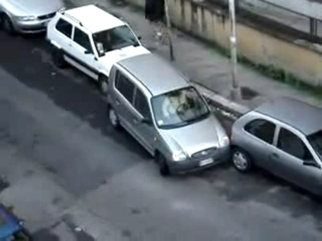 Garer sa voiture...