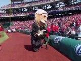 Baseball - La course des mascottes de présidents américains ruinée... par un lapin !