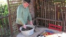 Jardinage: la préparation des semis de courges, mode d'emploi