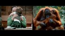 İnsanlar ve Hayvanlar Arasındaki 16 Müthiş Benzerlik