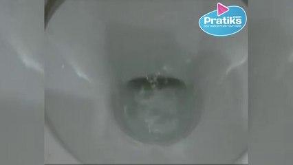 Wie reinigt man ein verkalktes WC-Becken