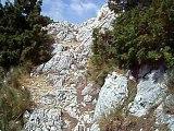 Trail off des Alpilles 2006 (126)
