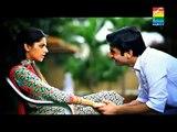 Title Song - Zindagi Gulzar Hai | OST HUM TV Drama | HD 1080p [2014]