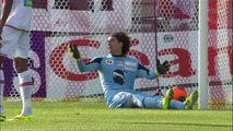 But Dimitar BERBATOV (52ème) - AC Ajaccio - AS Monaco FC - (1-4) - 26/04/14 - (ACA-ASM)