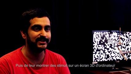 L'observation de la vision en 3D chez les mantes religieuses