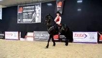 EQUIST 2014 - The Spirit of Horse / Profi Stunt Riders