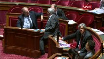 Le Parlement interdit définitivement la culture du maïs transgénique en France