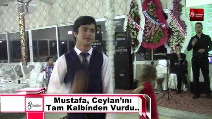 Ceylan-Mustafa Gökpınar Düğünj 8gunhaber [Yüksek Kalite ve Büyüklük]