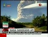 Un volcan indonésien perturbe le trafic aérien