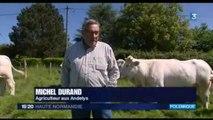 journal France 3 Haute Normandie 15 mai 2014 - TERRALYS EURE