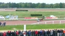 Course cheval contre vélo : le cycliste l'emporte au Mans